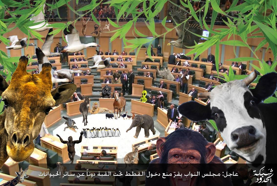 صورة إجراء أول دراسة واسعة النطاق على مجلس النوّاب
