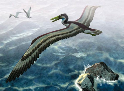 صورة سرب من الطيور الأبابيل يصاب بالحيرة أثناء الطيران فوق المنطقة