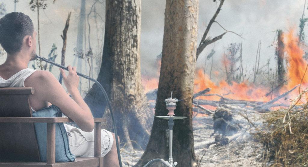 صورة فحم للأرجيلة و ٣ فوائد أخرى لحرائق الأمازون يخفيها جماعة البيئة