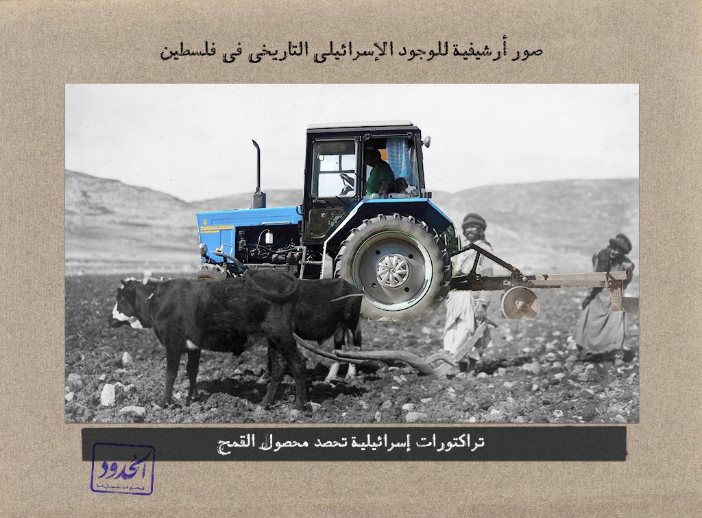 تركتورات إسرائيلية تحصد محصول القمح